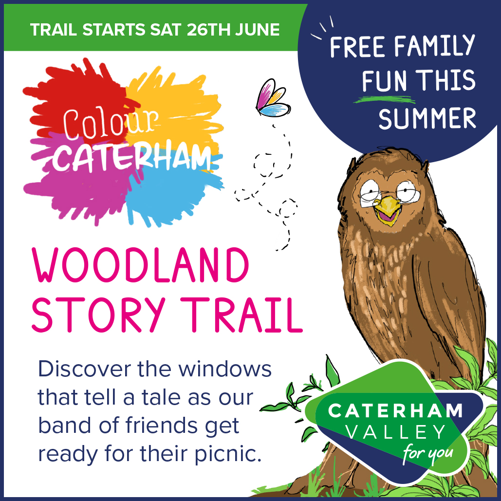 Caterham Valley's Woodland Story Trail in Surrey